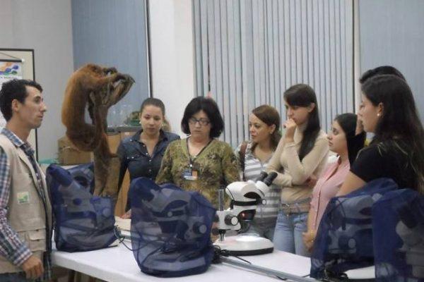 Pedagogia tem aula prática sobre ecologia e educação ambiental