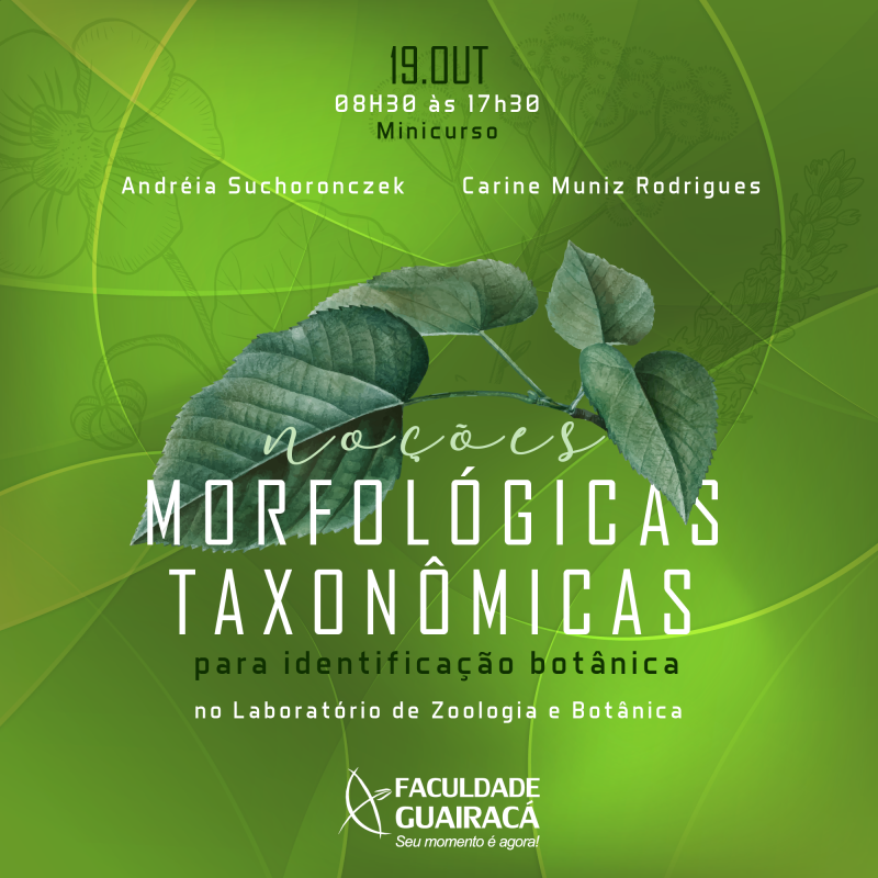 Guairacá abre inscrições para minicurso 'Noções Morfológicas e Taxonômicas para Identificação Botânica'