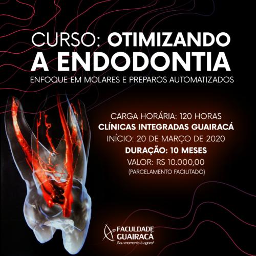 Colegiado de Odontologia da Guairacá promove curso de extensão em endodontia