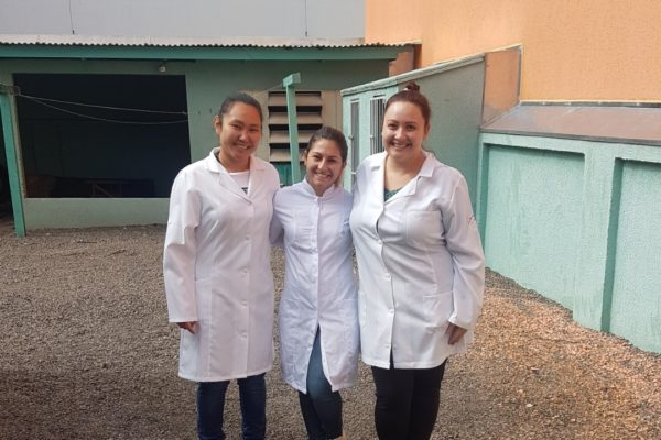 Enfermagem da Guairacá auxilia campanha de vacinação contra a gripe em Guarapuava
